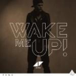 アヴィーチ – ウェイク・ミー・アップ/Avicii – Wake Me Up